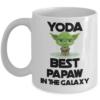 best-papaw-mug