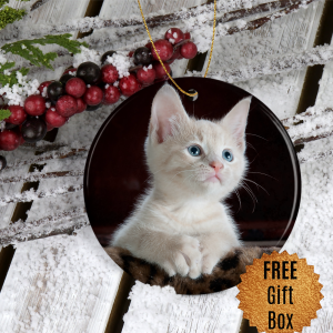 pet-photo-ornament
